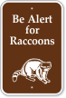 Be Alert For Raccoons Sign with Graphic