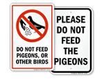 Do Not Feed Pigeons Sign